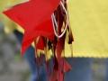 bourgeois-2011_photos-lio-208.jpg