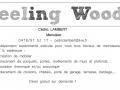 Feeling Wood